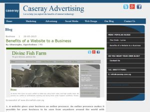 Caseray Solutions designs beautiful website