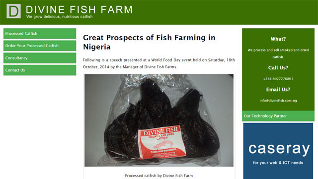 Branding and business technology support of Divine Fish Farm provided by Caseray Solutions Limited